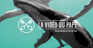 La vidéo du Pape (Protéger les océans – Septembre 2019)